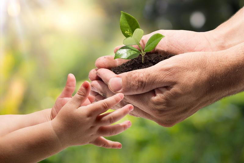 Nachhaltigkeit Baustoff