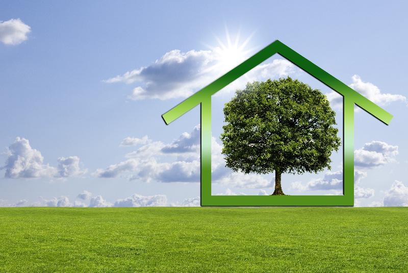 Umweltfreundlicher Baustoff Holz